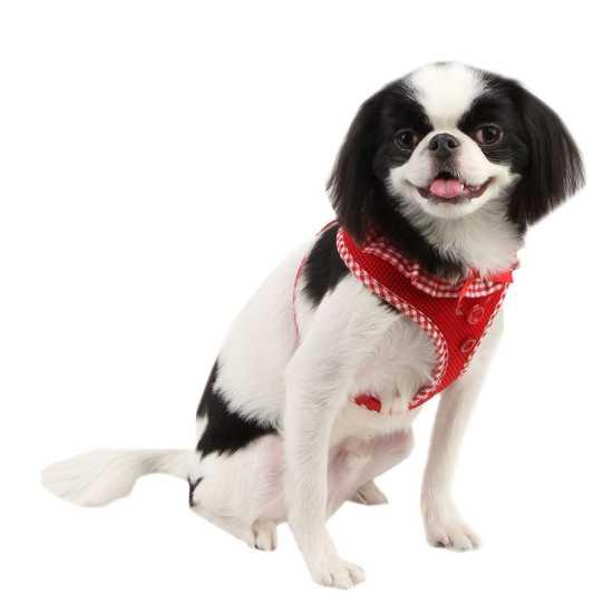 Puppia am za psa - UALA-AC860 - Red