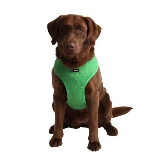 Puppia am za psa - UDCF-AC30 - Green