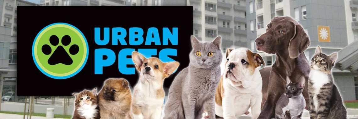 pet shop online