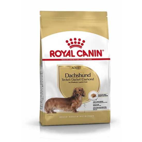 Royal Canin hrana za pse Dachshund Adult 500gr