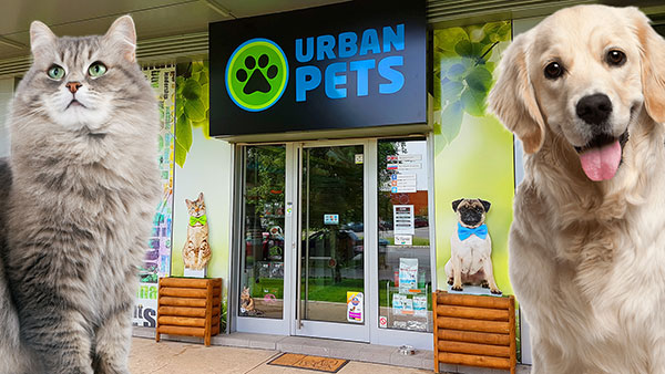 Urban-Pets-title-pic.jpg
